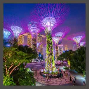 The Gardens by the Bay, Places to visit in Singapore